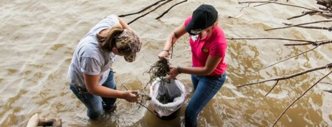 Fishing gear can harm wildlife and humans 